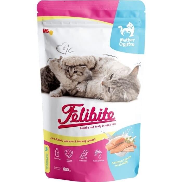 review felibite mother and kitten